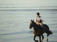 Beach Hacking with Edinburgh & Lasswade Riding Centre