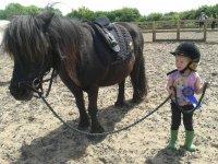 Mini Doll and Mini Pony