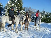 Snowing horse riding