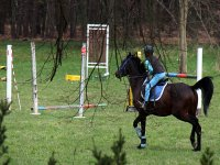 Dressage & Showjumping combination at Annandale Riding Club