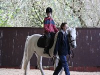 Courses for everyone at Annandale Riding Club!