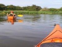 Tranquile kayaking