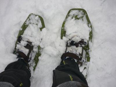 Snowshoeing in Sierra de Madrid + lunch