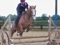 Showjumping at Hinckley Equestrian Centre