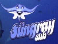 Stingray Sub
