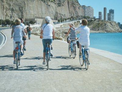 Blue Bike / Rental & Tours