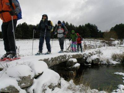 Snowshoes tour in Sierra de Gredos