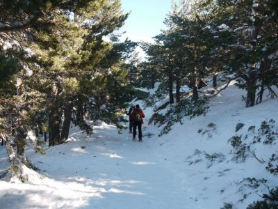 Snowshoes and Spa in Navacerrada