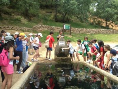 Orienteering Race in Los Montes de Toledo