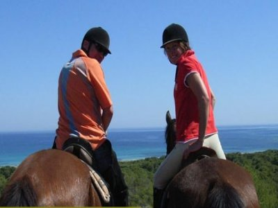 Horse ride around Santa Margalida, 3 hours