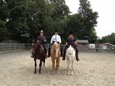 1 hour training for Western & Dressage