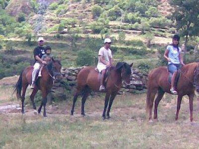 Horse riding 4h Sort-Malmercat