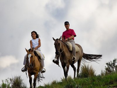 Special romantic couples: Horse riding route. 2h