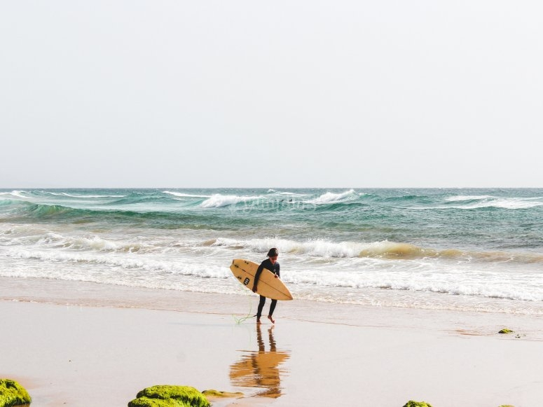Journey of a surfer