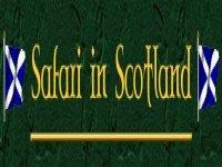 Safari in Scotland