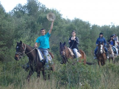 Horse riding tour in La Alcudia. 2 hours.