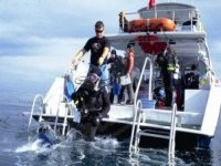 A full range of diving expereinces