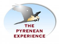 The Pyrenean Experience