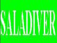 Saladiver Paintball