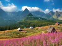 Guided walking holiday at Zakapone and the Polish Tatras
