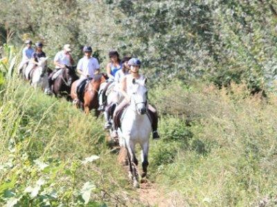 10 horse riding bonus, 30min, Huertas