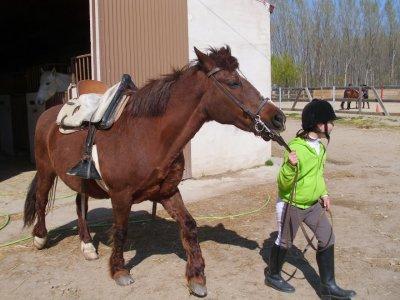 1-Hour Horse Lesson, Huertas, Salamanca