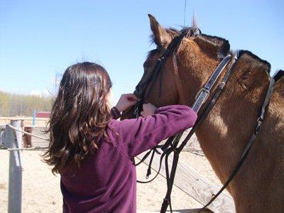 Pack 10 horse riding lessons 1 hour each, Huertas