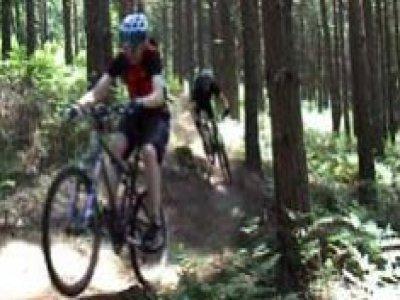 Surrey Hills All Terrain Mountain Bike Tour