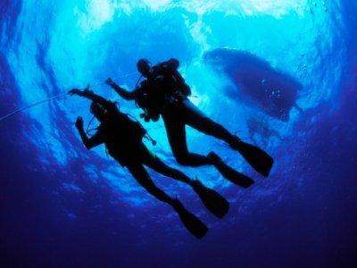 Island Cruising Diving