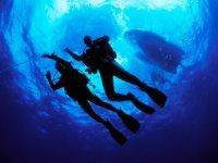 Decending below the dive boat