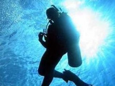 Dive Tarpoon