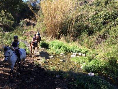 60 min horse riding tour Costa del Sol