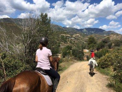10 riding lessons in Málaga