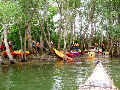 Kayak Route in the Mouth of the Ebro Adults