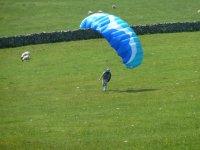 Just landing
