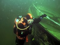 Diver on the Jacquin