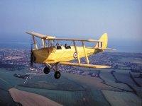 The Tiger Moth
