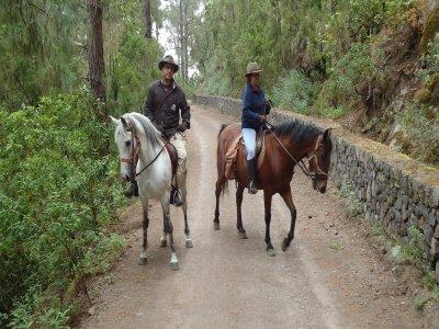 Travieso Aventura Rutas a Caballo
