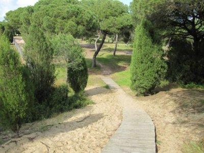 Guidance in Huelva Natural Park