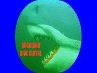 Buckland Dive Centre