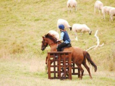 Nottingham Riding Centre