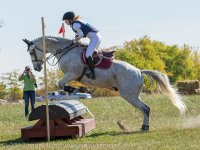 Open arena courses at Kingston Riding Centre