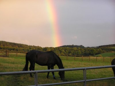 Shipley Lane Equestrian Centre