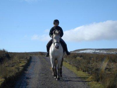 Arklemoor Riding Centre