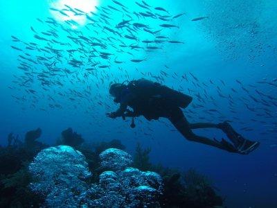 Antillas Diving Badajoz