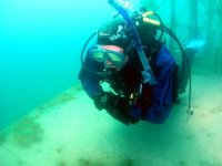 Scuba diving... exploring ocean's beauty