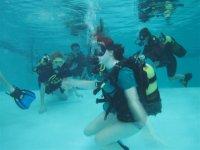 Diving training