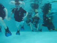 Diving training