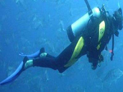 Norwich Sub-Aqua