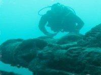 The adventure in scuba diving
